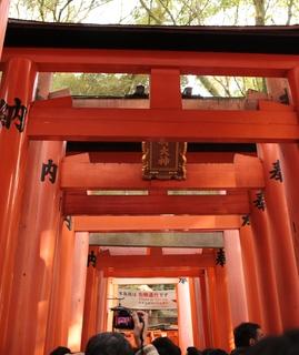 伏見稲荷神社.JPG
