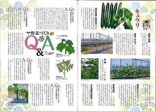 失敗しない野菜づくり2.jpg