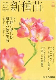 春号表紙.jpg
