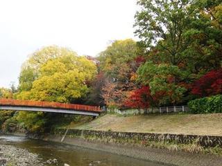 竜田川 橋.jpg